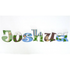 alphabet wooden wall letters or freestanding - painted letters for kids names