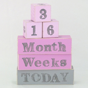 Baby Age Milestone Blocks - record your babys age in photos BABY PINK AND GREY