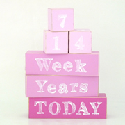 Baby Age Milestone Blocks - record your babys age in photos BABY PINK AND HOT PINK