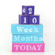 Baby Age Milestone Blocks - record your babys age in photos PURPLE AQUA AND HOT PINK