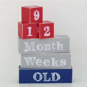 Baby Age Milestone Blocks - record your babys age in photos RED GREY AND NAVY