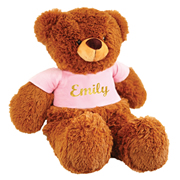 Personalised Teddy Dorothy Pink - Heat Pressed