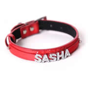 Personalised Pet Collar - Red Medium