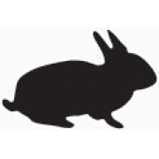 Flatboard Chalk Board Rabbit