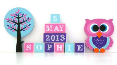 .Wooden Blocks - Personalised BLOCKS - WOODLAND FRIENDS GIRL SET name, date and two freestanding blocks